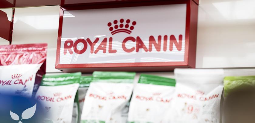 giornata-royal-canin